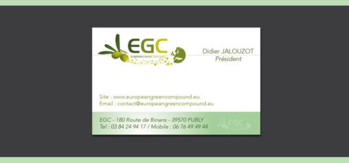 Création carte de visite EGC