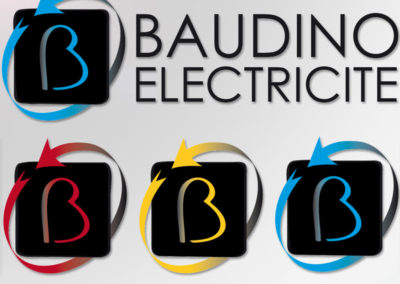 Baudino électricité Société